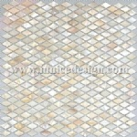 Mother of Pearl Mosaic